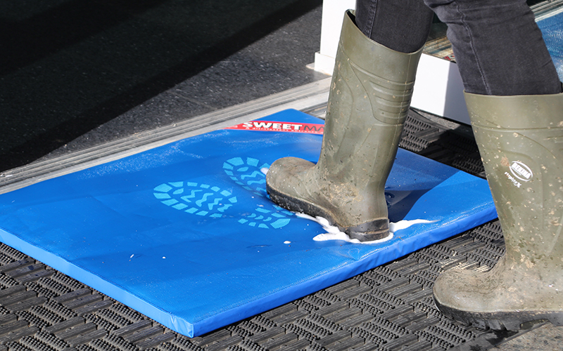 Stepping onto the Sweetmat disinfection mat