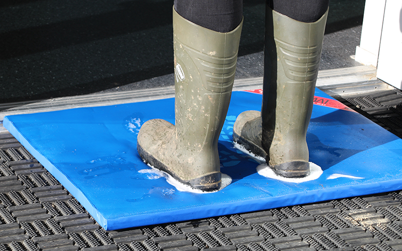 Stepping off the Sweetmat disinfection mat